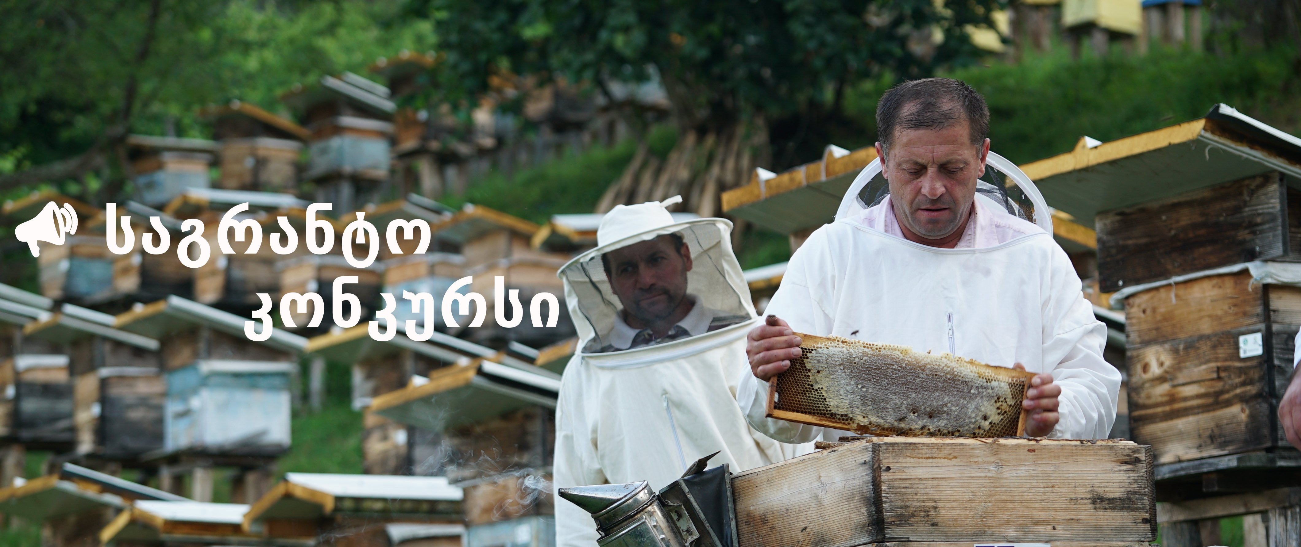 Sustainable Development of Beekeeping in Georgia - Closed Grant Call