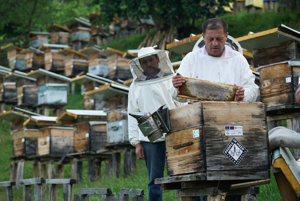 Sustainable Development of Beekeeping in Georgia